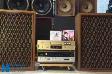 Địa chỉ mua loa nghe nhạc vàng tại Hà Nội